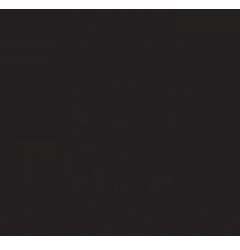 Mast-Jägermeister SE